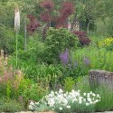 Bonne terre de jardin