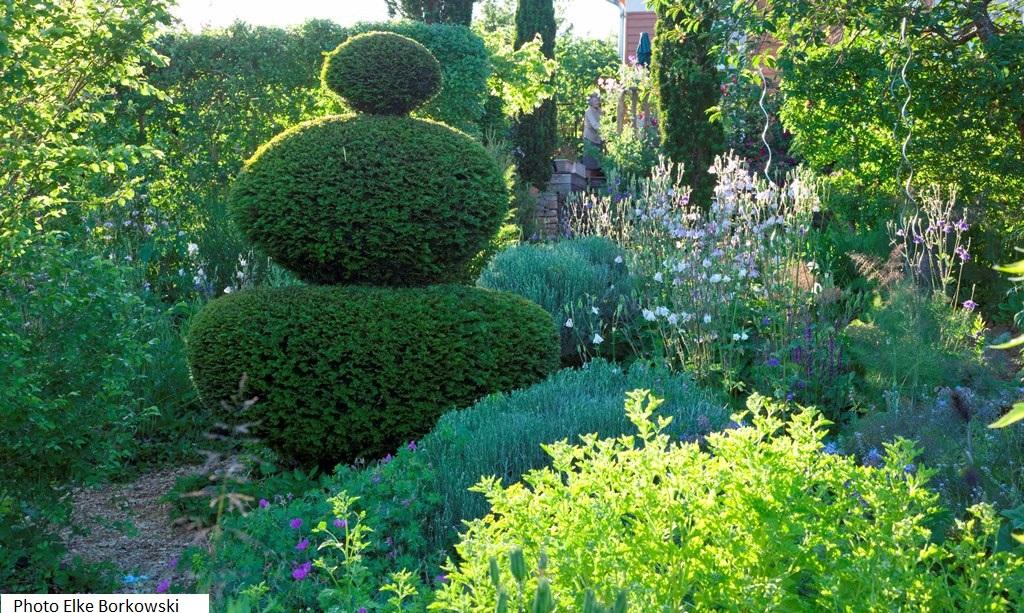 Plantes vivaces rustiques achat vente et conseil le for Achat plante jardin